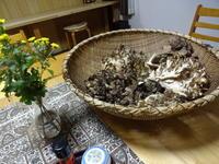 キノコの季節到来祥 - 漆器もある生活