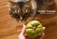 グリーントマトと猫 - Kyoko's Backyard ~アメリカで田舎暮らし~