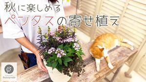 さにべるスタッフblog     -Sunny Day's Garden-