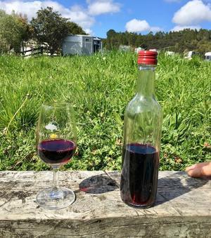 ワインは順調です/ Our Wine, My Project, RBG - アメリカからニュージーランドへ