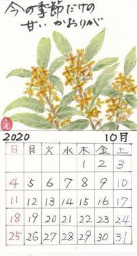 青葉2020年10月金木犀 - ムッチャンの絵手紙日記