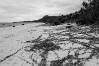 想い出はモノクローム - 沖縄 Part.52 - - 夢幻泡影