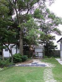 【ガーデンDIY】ペイビングの下準備とコンクリート製の枕木 - シンプルで心地いい暮らし