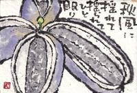 あけび・秋風に - 北川ふぅふぅの「赤鬼と青鬼のダンゴ」~絵てがみのある暮らし~