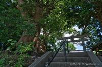 益城町の権現社 - Mark.M.Watanabeの熊本撮影紀行