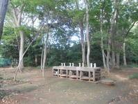 初秋散歩3) キャンプ場を探検して戻ろう - のび丸亭の「奥様ごはんですよ」日本ワインと日々の料理