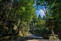 晩夏の高山寺 - 鏡花水月