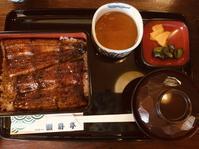 浜松で鰻食べてきました - In bocca al lupo 2