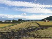 収穫終了 - 安曇野建築日誌