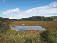 霧ヶ峰高原日記:八島ヶ原湿原(池の畔の景色) - ご無沙汰写真館