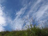 霧ヶ峰高原日記:八島ヶ原湿原(ススキのある風景) - ご無沙汰写真館