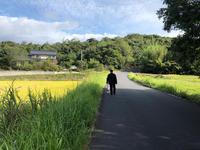 フミちゃんと一緒に島根と岡山のわんこあんへ♪ - TAKE BLOG