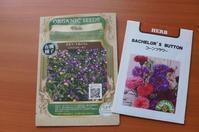 野菜とお花の種まき - mille fleur の花とおやつ