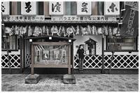 浅草園芸ホール - コバチャンのBLOG