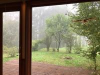 霧の朝 - 風路のこぶちさわ日記