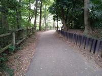 静かな緑地公園 - 散策で発見、自分の街のいいところ