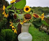 今日も草刈り - Photo Album