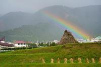 野沢温泉村稲刈りが始まりました - 野沢温泉とその周辺いろいろ2