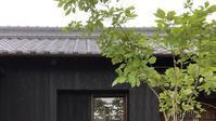 ホームページを更新しました - 国産材・県産材でつくる木の住まいの設計 FRONTdesign