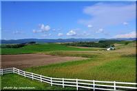 丘の風景5(美瑛町) - 北海道photo一撮り旅