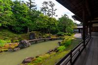 夏の庭(建仁寺・霊洞院) - 花景色-K.W.C. PhotoBlog