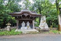 深大寺 - あだっちゃんの花鳥風月