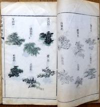 芥子園画伝 - 玲児の蔵書