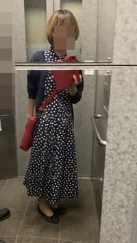 赤いバッグ - 新生・gogoワテは行く!