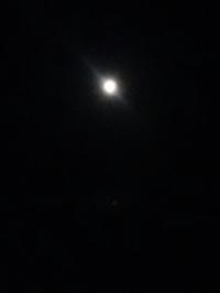 十五夜 - hanasdiary.exblog.jp