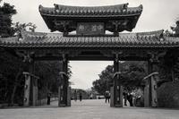想い出はモノクローム - 沖縄 Part.64 - - 夢幻泡影