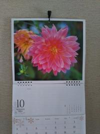 10月 - 福岡おでかけと食日記