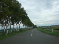 美瑛から青い池まで新しいサイクリングロードを走ってみた! - AL6061