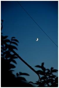 月の魔力 -  one's  heart