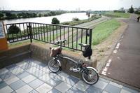 江戸川サイクリングロードへ行こう その2 - 「趣味はウォーキングでは無い」