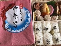 ピンク【崎陽軒のえびシウマイ弁当】期間限定 - お散歩アルバム・・春日和花粉日和