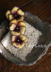 髪飾り~手染めのパンジー**くちばしクリップ - 布の花~花びらの行方 Ⅱ