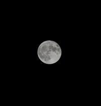 中秋の名月 - Photograph & My Super CUB110 【しゃしんとスクーター】