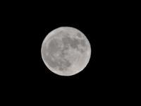 10月2日の月 - 写真撮り隊の今日の一枚2