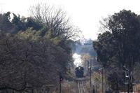 ゆらゆら揺れる- 2020年冬・真岡鉄道 - - ねこの撮った汽車