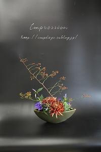 定期装花からマム:ココア - Impression Days