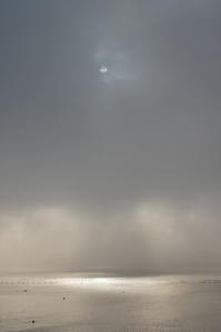 霧に煙る - マスター写真館2