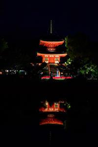 観月の宴2つめ - Taro's Photo