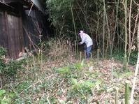 竹を切る - あこば