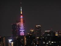 今夜の東京タワー - 新 LANILANIな日々