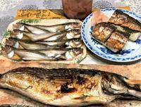 焼き鯖焼き鯖寿司に堪能 - 島暮らしのケセラセラ