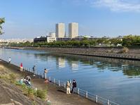 ランの途中の境川の風景です - 浦安フォト日記