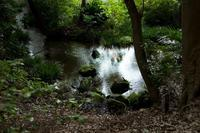 湧き水のまち東久留米(2) - M8とR-D1写真日記