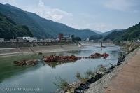 球磨川大水害-坂本橋 - Mark.M.Watanabeの熊本撮影紀行