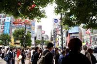 Go To 渋谷(3) - 「シュクレはお留守番」スナップ日記