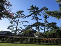 平城京の興福寺に見る事件の後先 - 地図を楽しむ・古代史の謎